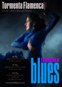 flamenco blues V2US cmyk